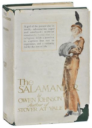 THE SALAMANDER. Owen Johnson, Everett Shinn, novel, illustrations